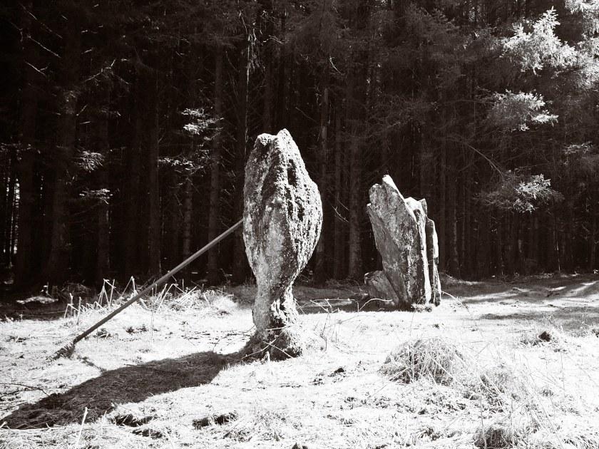 Kingarth Stones